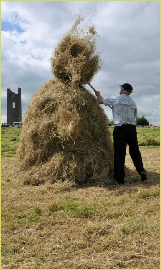 Trim Haymaking Festival